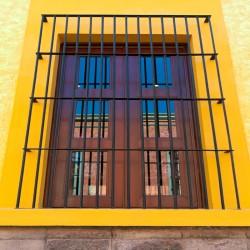Fixed Window Security Bars